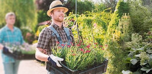 Pkw Anhänger für Hobby und Garten